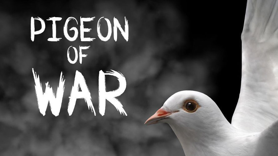https://www.gamerome.com/wp-content/uploads/2019/10/pigeon_of_war.jpg
